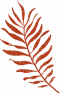 palm--icon