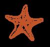 ss--orange
